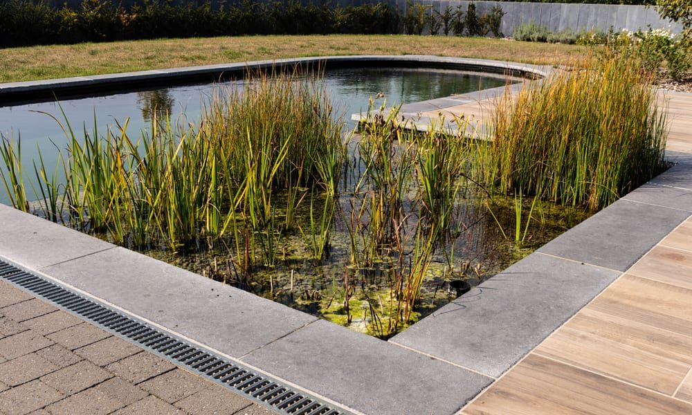 totaal-tuin-project-3
